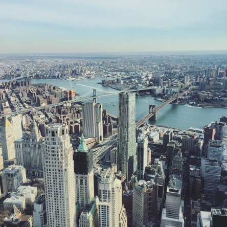 View From the One World Trade